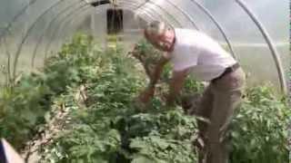 видео Производство органических продуктов питания