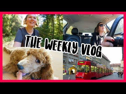 Hiking, Shopping, Working, Training! Weekly Vlog