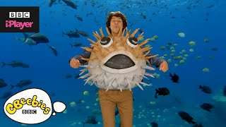 Andy's Aquatic Raps | Fish Fiesta | CBeebies