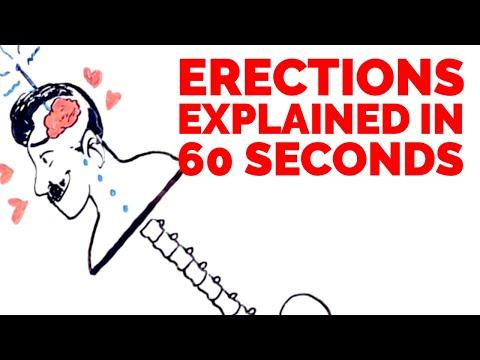 erecție proastă 25