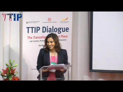 TTIP Dialogue - Concerns of Critics