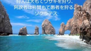 島田雄貴デザイン事務所の「名言・格言」シリーズ。 ソクラテスは古代ギ...