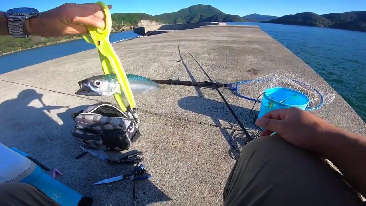 釣り場 天草