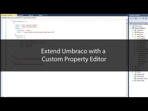 Create a custom Umbraco Property Editor