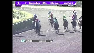 Vidéo de la course PMU PREMIO CORNELIO