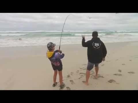 IFISH Port Lincoln Salmon