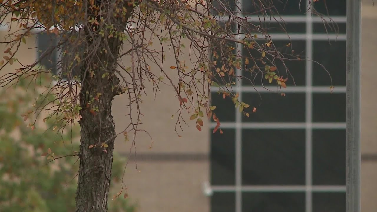 Round Rock teacher arrested, accused of inappropriate relationship with student