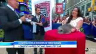 Guinness World Record Holders Take Over Times Square   Video   ABC News