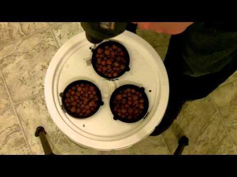 VERY EASY AND SIMPLE HOMEMADE HYDROPONIC BUBBLEPONIC SY...   Doovi