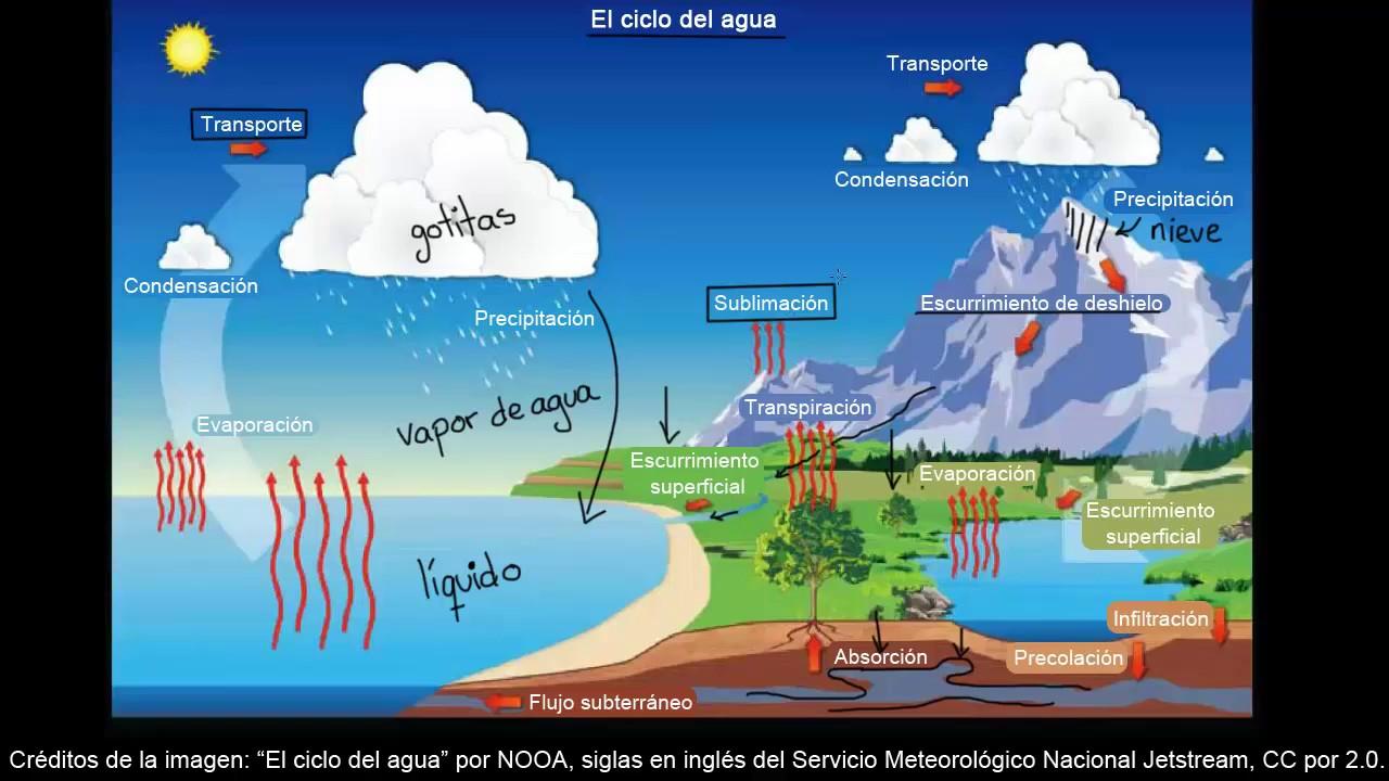 El Ciclo Del Agua Ecología Biología Khan Academy En Español Youtube
