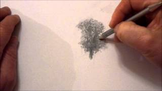 How to draw trees with graphite powder and pencils