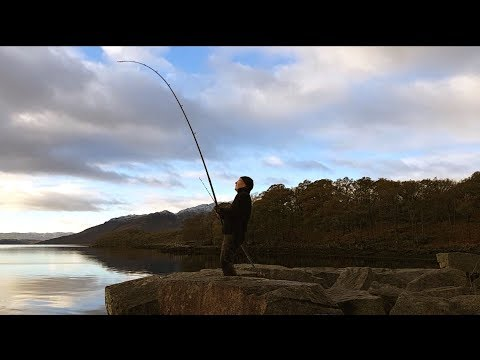 Solo Wild Camp And Fishing On Loch Etive