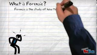 Forensic Pt. 1: Perfecting DNA Profiling
