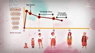Sollirium Health Group   VT em animação Fertilidade Feminina