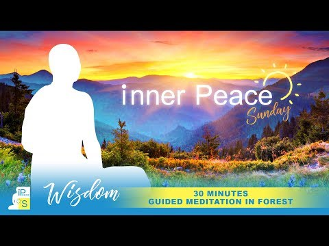 iPSunday - 30 Mins Guided Meditation in Forest