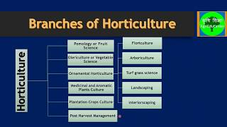 Video Horticulture and its Branches download MP3, 3GP, MP4, WEBM, AVI, FLV Juli 2018