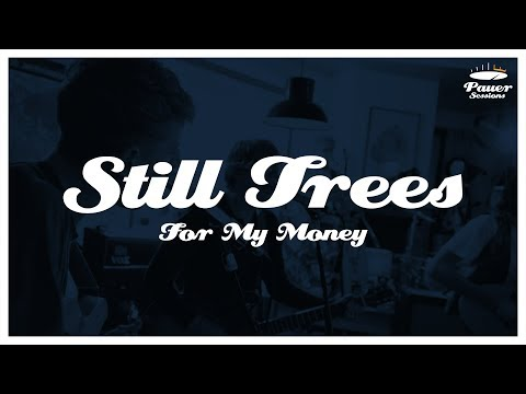 Pauer Session #01 | Still Trees - For My Money