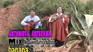 Antonieta Antezana - MIX malvas t