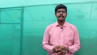 making terrace garden at your home by bio blooms agro india pvt ltd