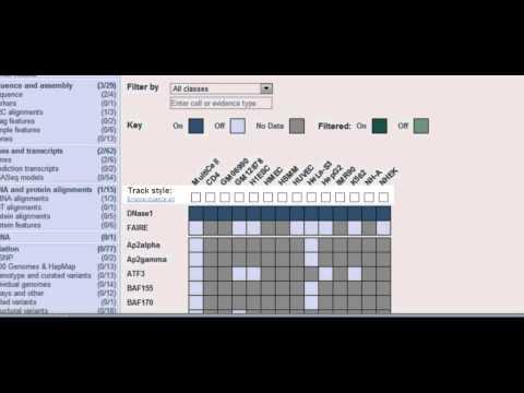 Viewing Ensembl Regulation & ENCODE Using The Matrix