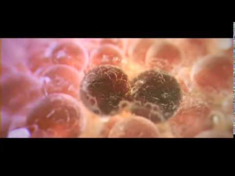 One day we will beat cancer | Cancer Research UK   YouTube