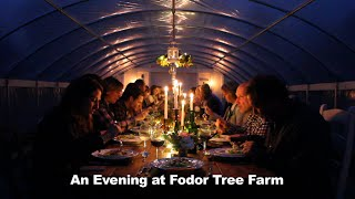 Catullo Catering Event: An Evening At Fodor Tree Farm