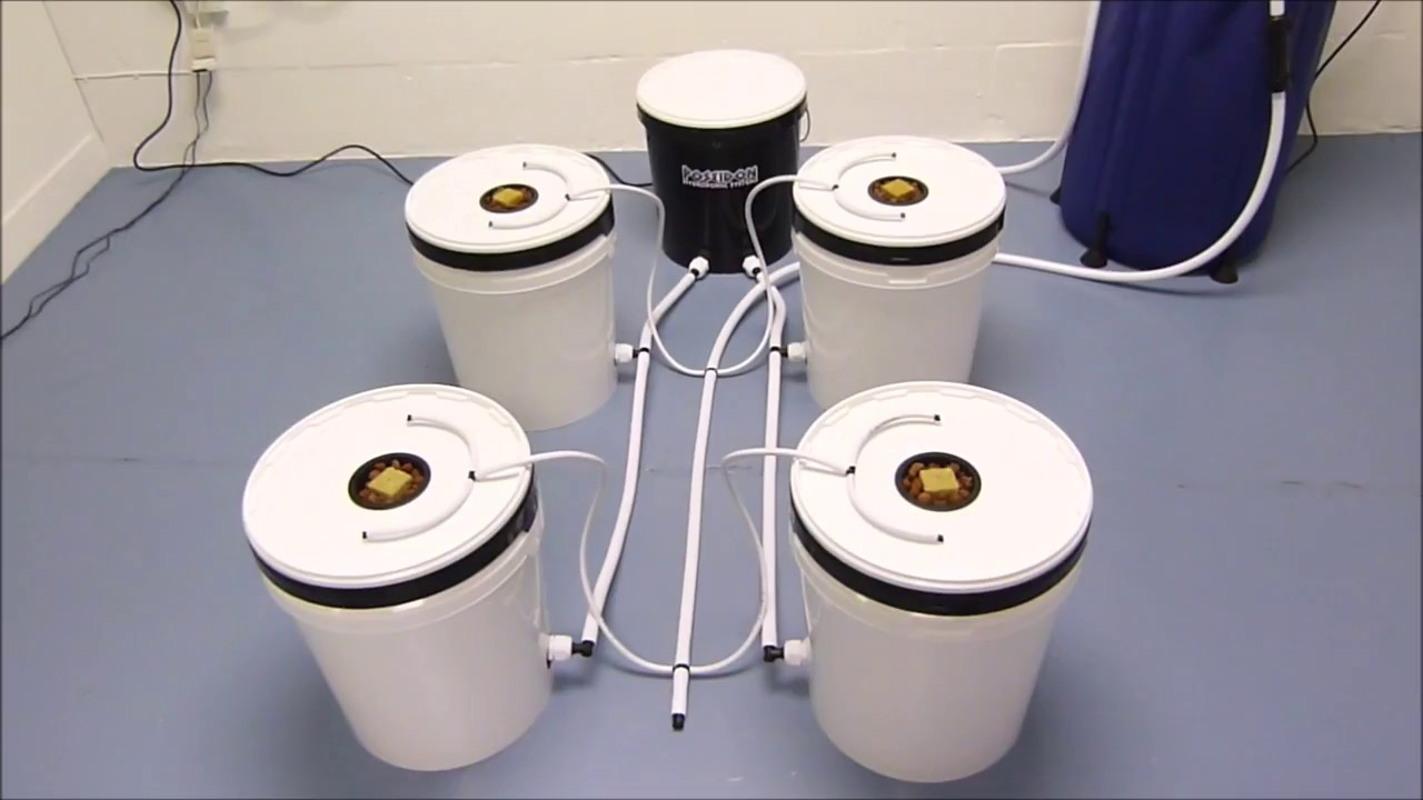 Vortex Aeroponics - Poseidon Hydroponic Systems