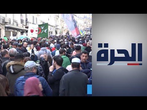 الجزائر.. منظمة العفو الدولية تطالب بمحاكمة عادلة لمعتقلي الحراك  - 15:59-2020 / 2 / 23