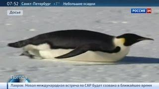 видео Станция Восток — антарктическая научная станция