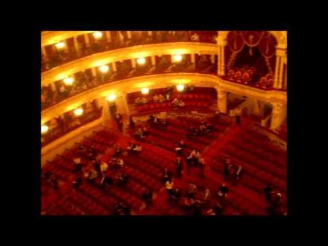 Схема исторического зала большого театра