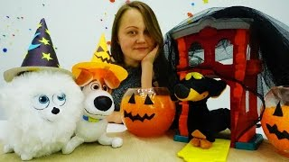 Тайная жизнь домашних животных. Видео для детей. Поделки: Делаем костюмы на ХЭЛЛОУИН Максу и Гиджет