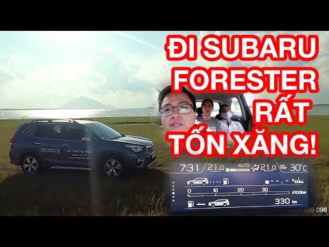 Subaru Forester chạy 100km hết bao nhiêu lít xăng? | Suất tiêu hao nhiên liệu Forester 2020