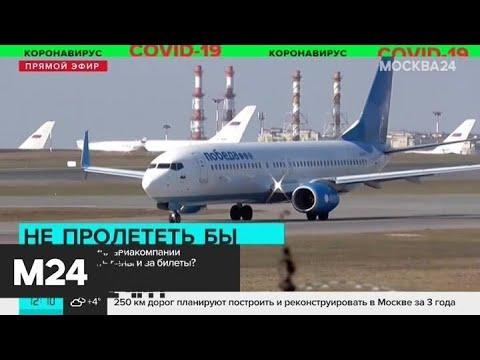На каких условиях авиакомпании будут возвращать деньги за билеты - Москва 24