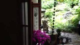 森鴎外邸に行き、中も見てきました。 外の庭には池があり、鯉が泳いでい...