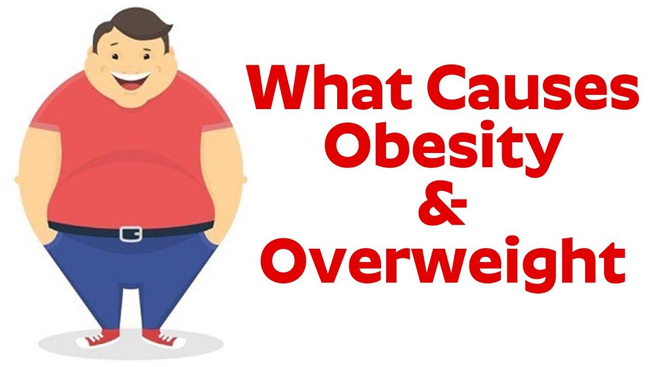 What Causes Obesity Overweight Dr Chandrasekharam V V S Youtube