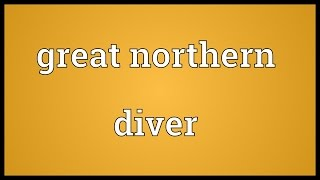 Great northern diver Meaning