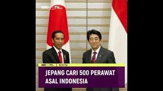 JEPANG CARI 500 PERAWAT ASAL INDONESIA
