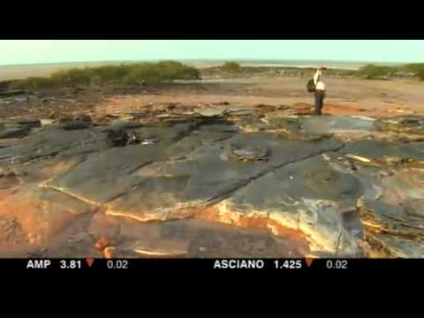 Dinosaur footprints analysed near gas site