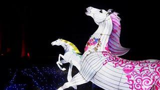 Шоу китайских фонариков. Огромные светящиеся фигуры. Литва. | Chinese Lanterns Color Show. Lithuania