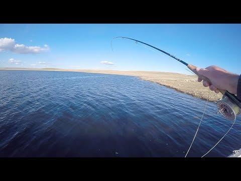 Diamond Lake WY Trout Fishing  Challenge