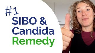 SIBO and Candida - The #1 Remedy that Helps You Heal BOTH