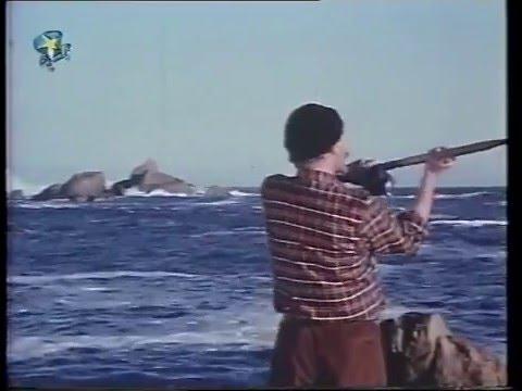PATERNOSTER.  My liedjie van verlange (1975)