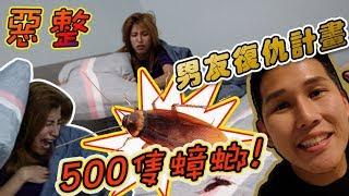 【惡整】蟑螂復仇記:男友用了500只蟑螂把熟睡女友嚇出尿來!女友真的生氣了....(Jeff & Inthira Prank)