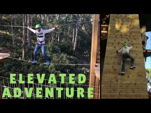 Elevated Adventure  (Live Wire Park)
