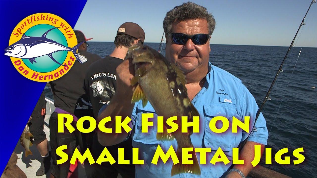 Rockfish Fishing Using Small Magic Metal Jig Sport