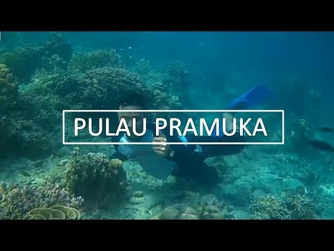 Pulau Pramuka 2017