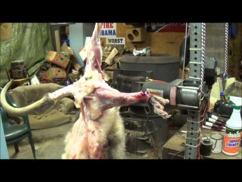 Professional Fur Handling: Opossum. Part 1- Skinning