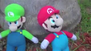 New Super Mario Bros DS in a Nutshell