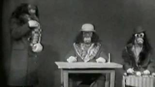 Ernie Kovacs - The Nairobi Trio...The Early Years