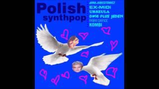 polish synthpop - VOL. II